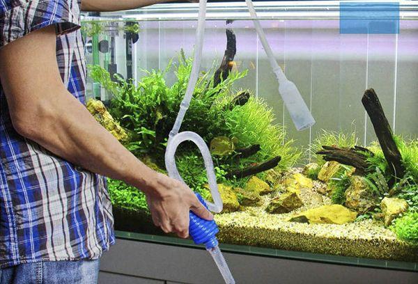 Чистка воды в аквариуме