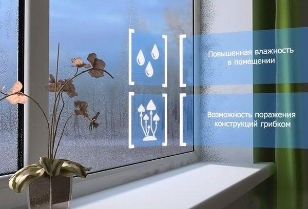Конденсат на окнах и появление грибка
