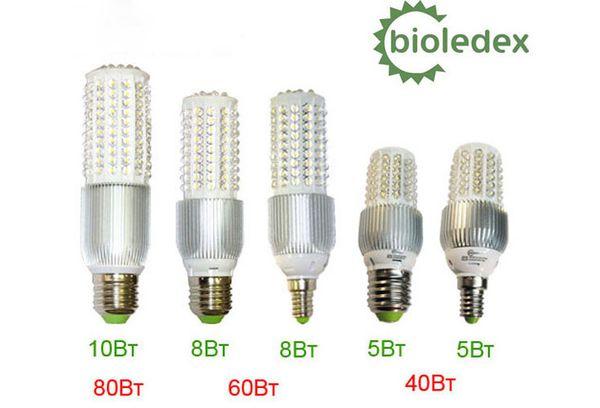 BIOLEDEX лампочки