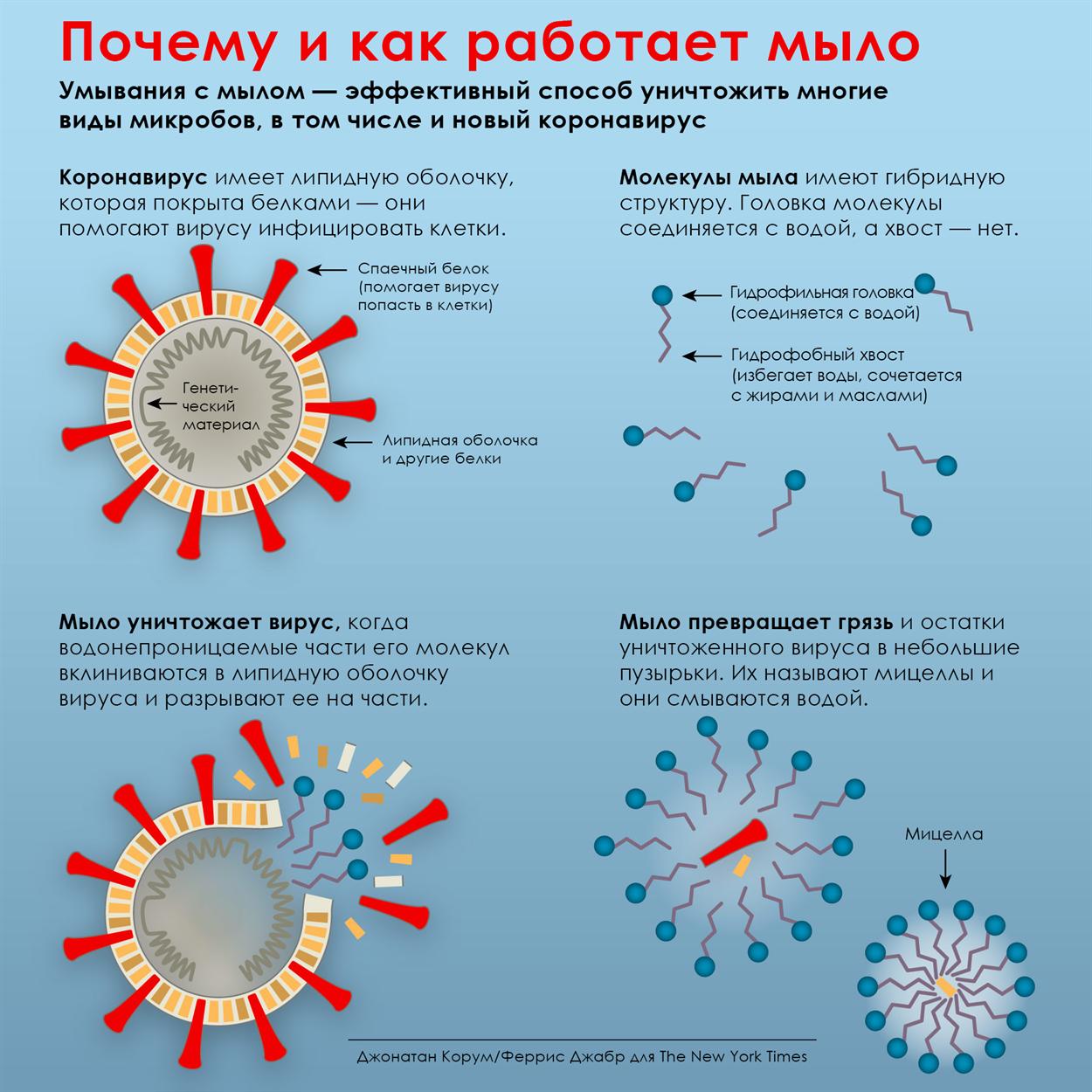 Почему мыло защищает от коронавируса