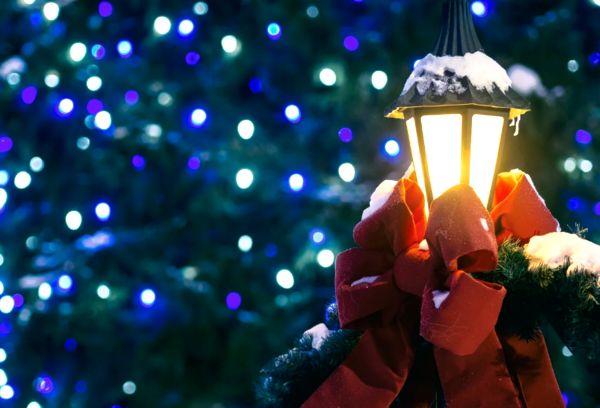Елка в Новогоднюю ночь
