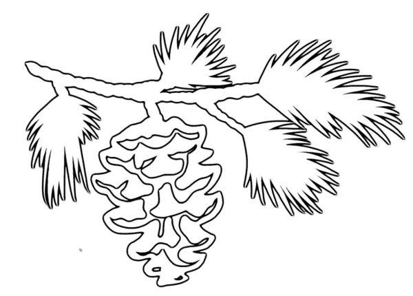 Вытынанки елочные ветки